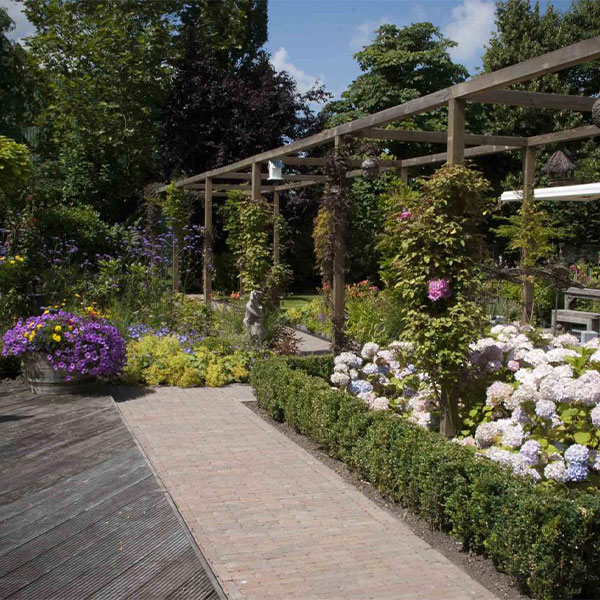 Dutch Quality Gardens - Beplantingsplan laten maken