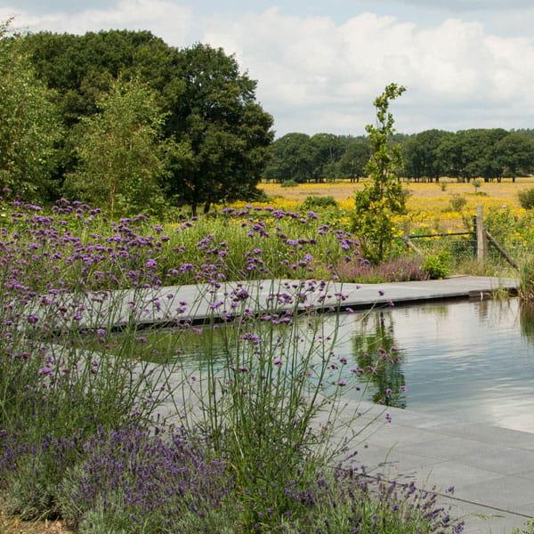 Zwemvijver-Dutch-Quality-Gardens-Voorbeeld3