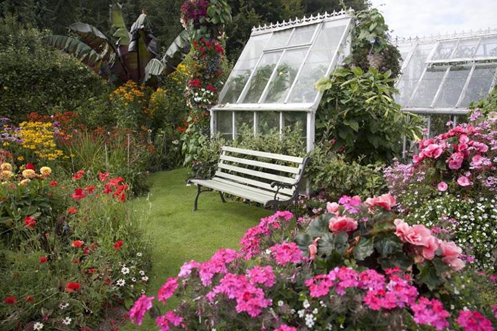 engelse_cottage_tuin_met_een_franse_slag