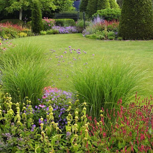Beplantingsplan Laten Maken Dutch Quality Gardens 1 Min