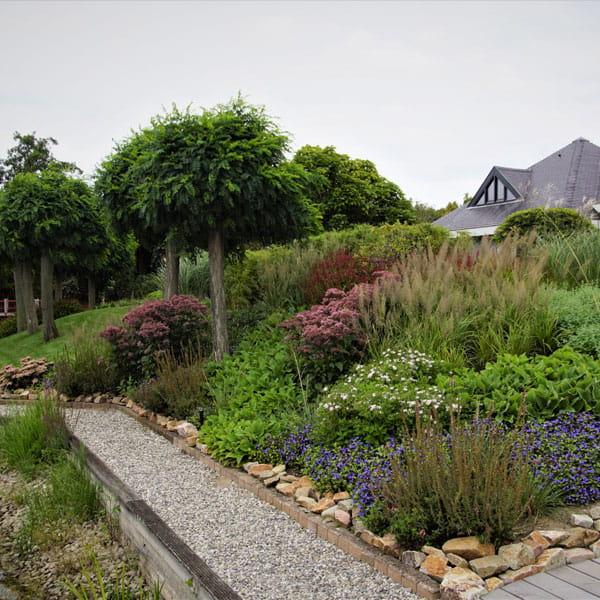 Beplantingsplan Laten Maken Dutch Quality Gardens 10 Min