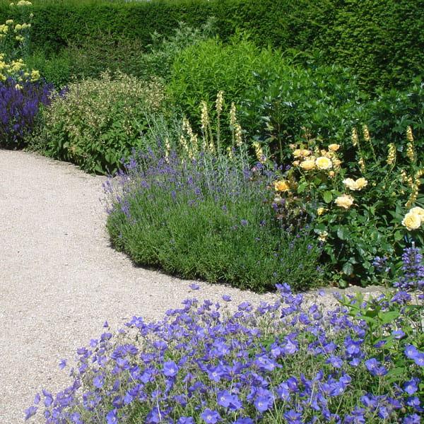 Beplantingsplan Laten Maken Dutch Quality Gardens 11 Min