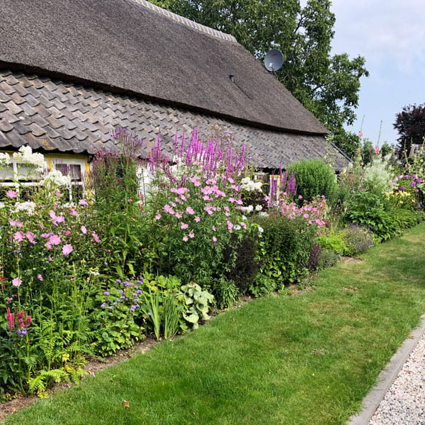 Beplantingsplan Laten Maken Dutch Quality Gardens 13 Min
