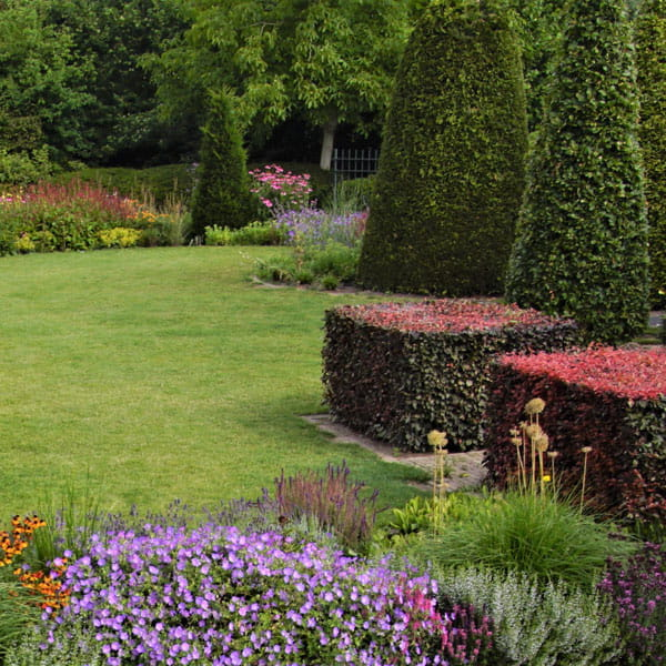 Beplantingsplan Laten Maken Dutch Quality Gardens 19 Min