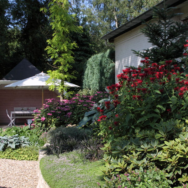 Beplantingsplan Laten Maken Dutch Quality Gardens 2 Min