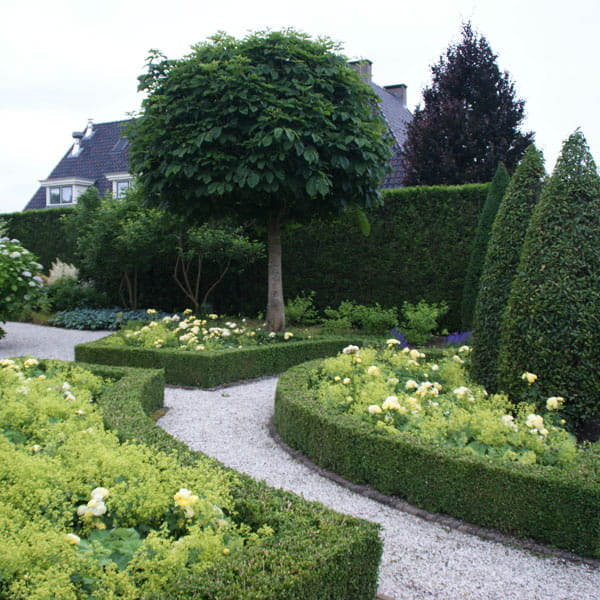 Beplantingsplan Laten Maken Dutch Quality Gardens 9 Min