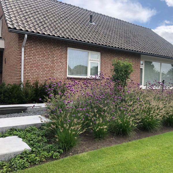 Voortuin Laten Ontwerpen Door Dutch Quality Gardens 1