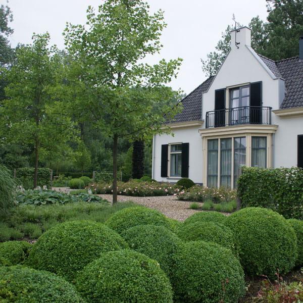 Voortuin Laten Ontwerpen Door Dutch Quality Gardens 6