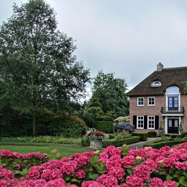 Voortuin Laten Ontwerpen Door Dutch Quality Gardens 7