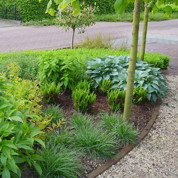 Voortuin Laten Ontwerpen Door Dutch Quality Gardens 8