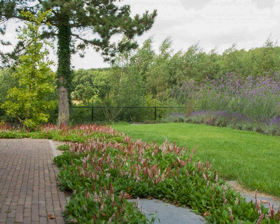 Aandachtig Genieten Dutch Quality Gardens 10