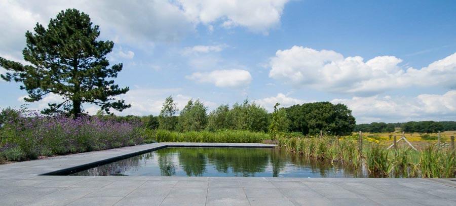 Aandachtig Genieten Dutch Quality Gardens 11