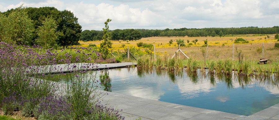 Aandachtig Genieten Dutch Quality Gardens 2