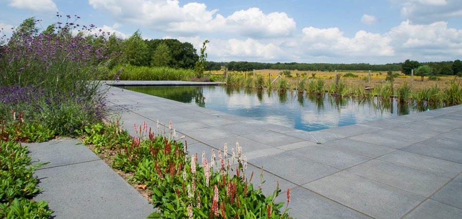 Aandachtig Genieten Dutch Quality Gardens 4