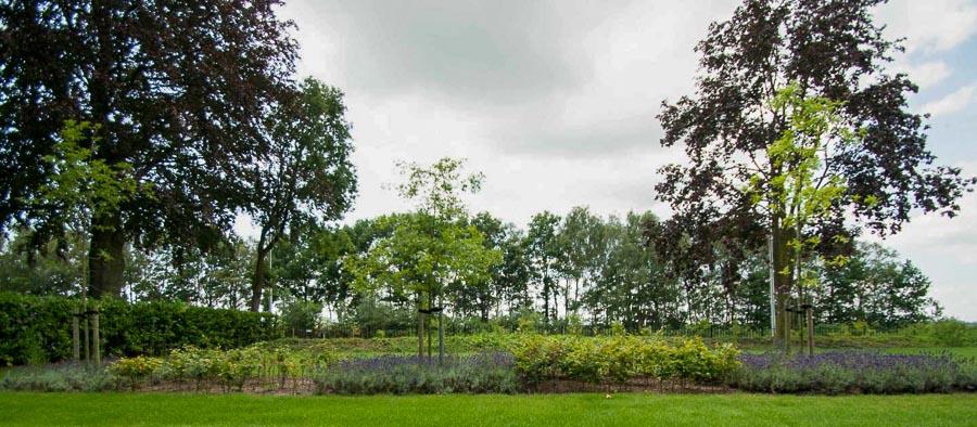Aandachtig Genieten Dutch Quality Gardens 9