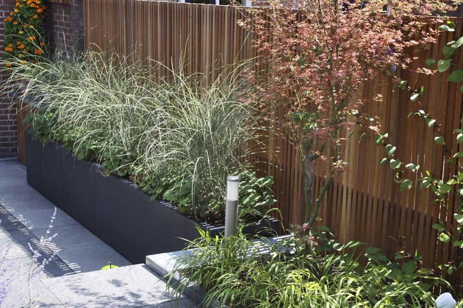 Aziatische Stadstuin Dutch Quality Gardens 6