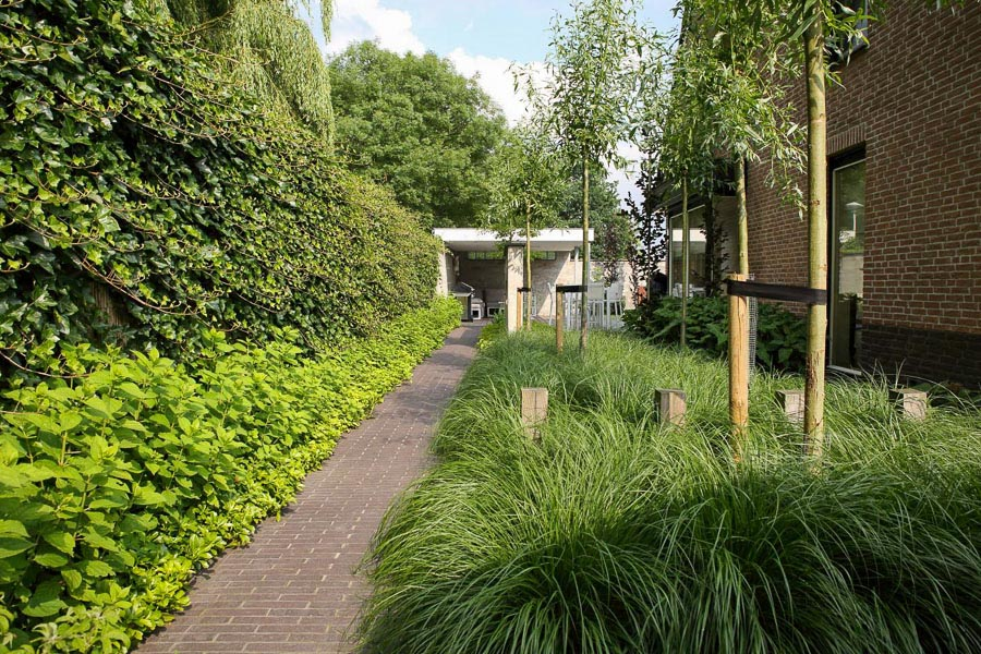 Cortenstaal Doorkijk Dutch Quality Gardens 1
