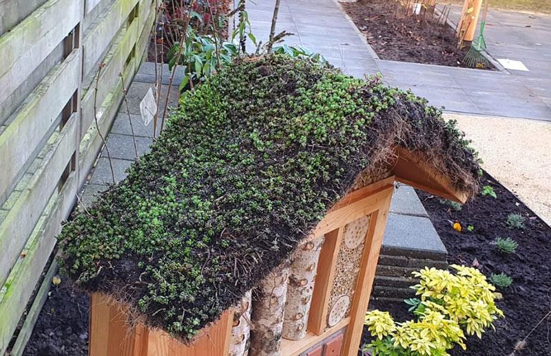 Ecologische Tuin 12