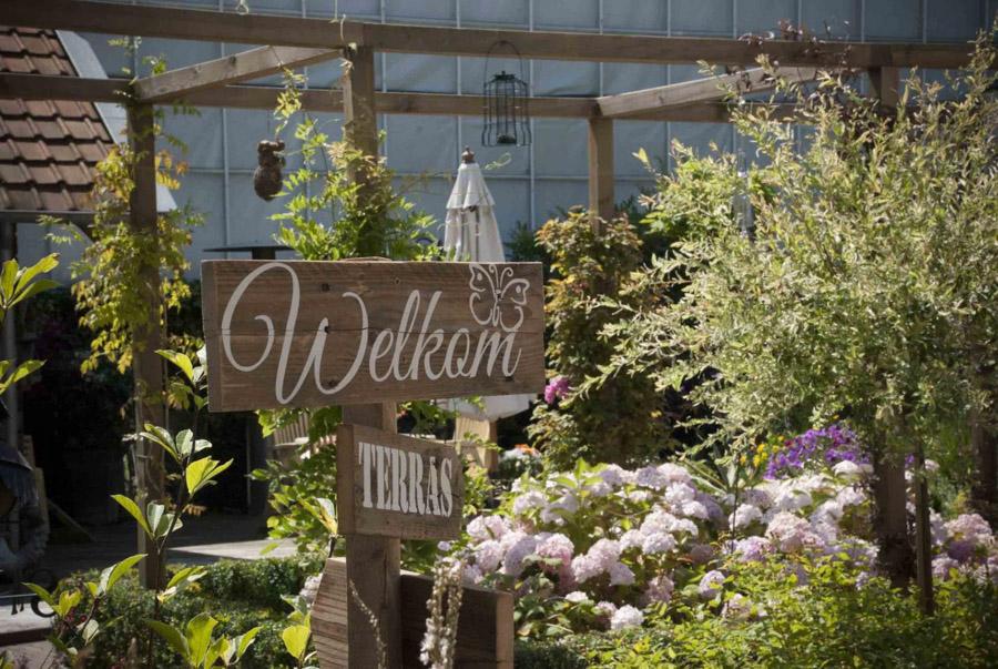 Klassieke Cottagetuin Dutch Quality Gardens 3