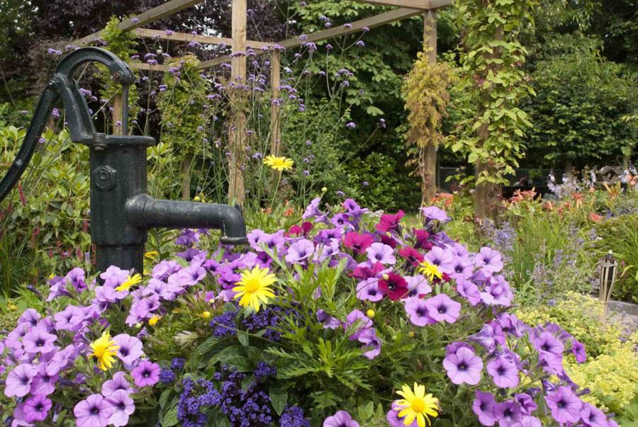 Klassieke Cottagetuin Dutch Quality Gardens 6