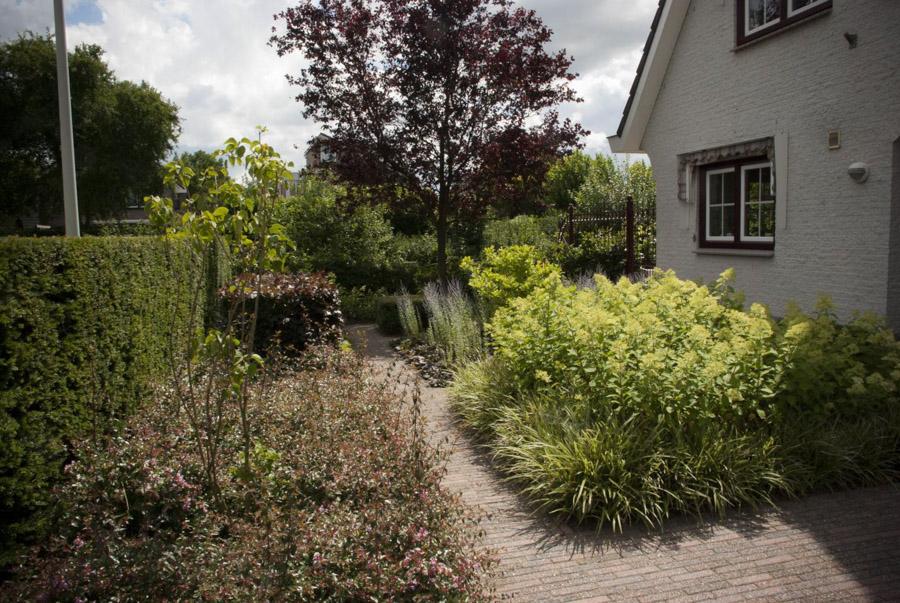 Klassieke Tuin Dutch Quality Gardens 5