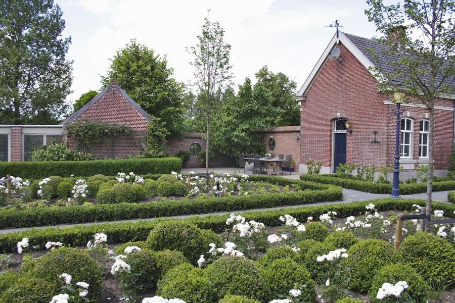 Landelijke Tuin Lepelstraat Dutch Quality Gardens 4