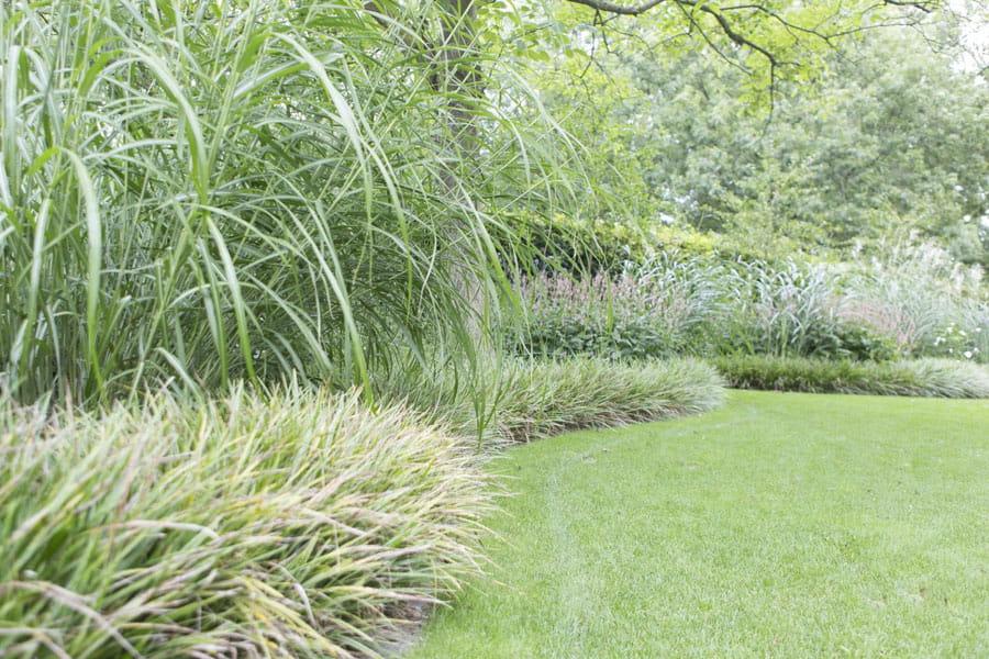 Leeftuin Met Boomhut Dutch Quality Gardens 8