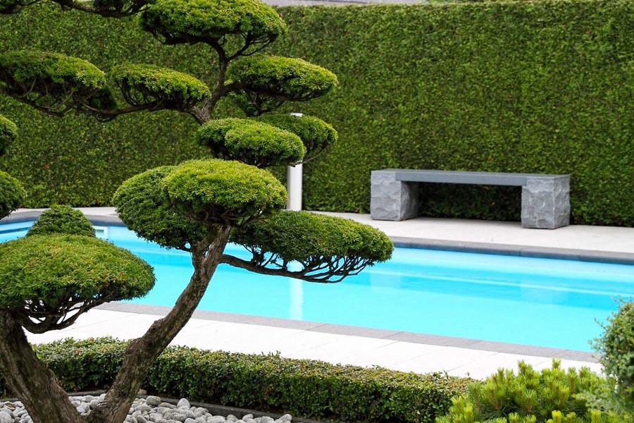 Modern En Strak Dutch Quality Gardens 2
