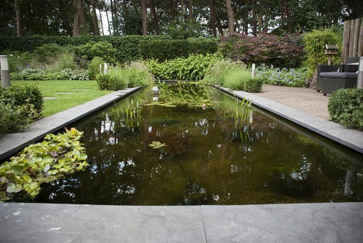 Moderne Bosaangrenzende Tuin Dutch Quality Gardens 3