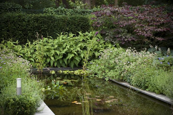 Moderne Bosaangrenzende Tuin Dutch Quality Gardens 7