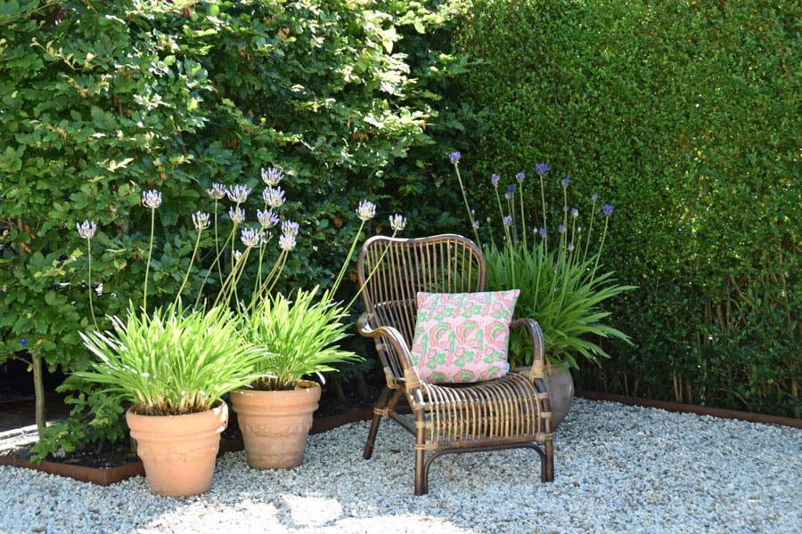 Moderne Boerderij Tuin Dutch Quality Gardens 10
