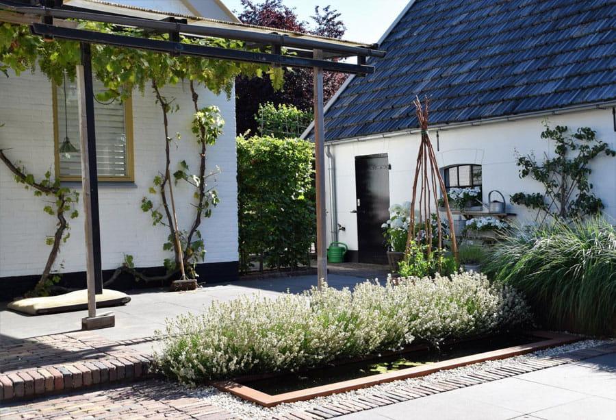 Moderne Boerderij Tuin Dutch Quality Gardens 2