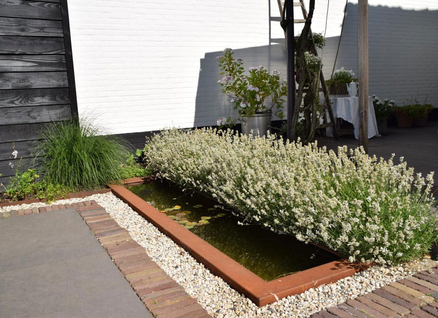 Moderne Boerderij Tuin Dutch Quality Gardens 3