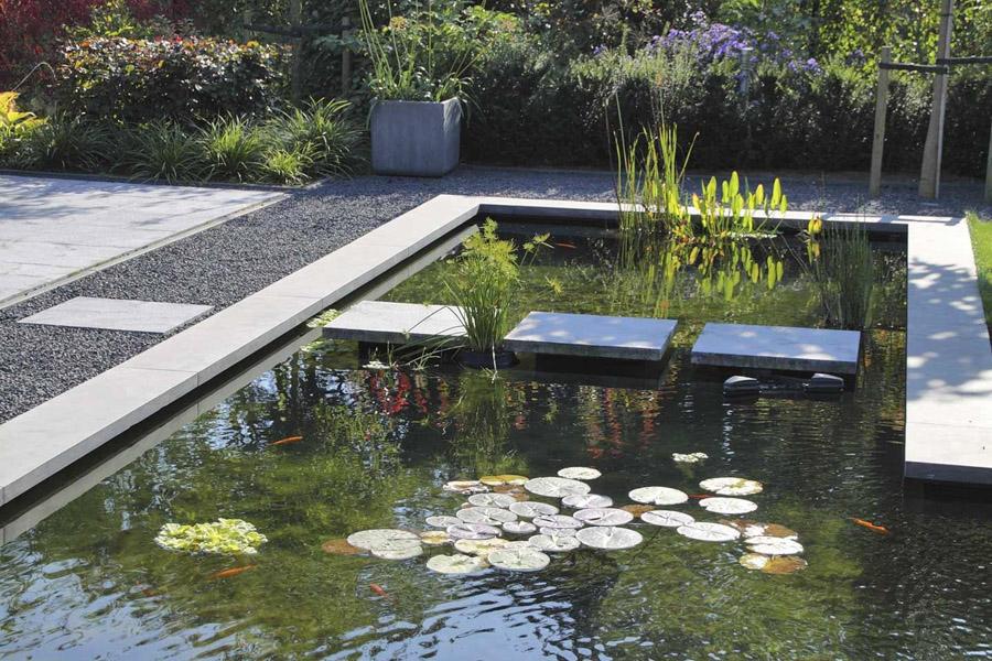 Moderne Tuin Halsteren Dutch Quality Gardens 4