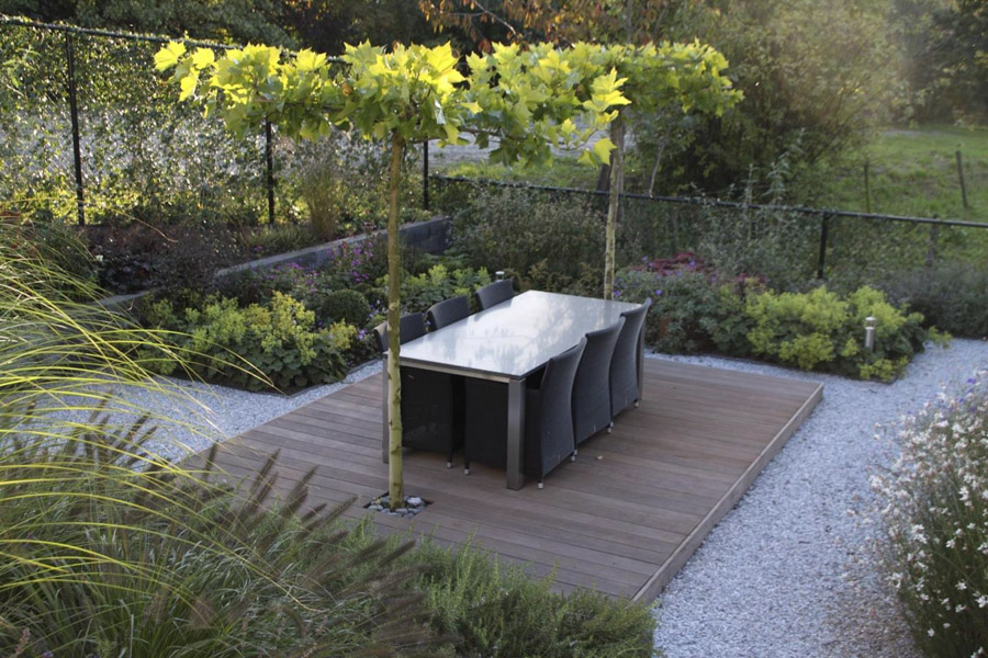 Moderne Tuin In Steenbergen Dutch Quality Gardens 1