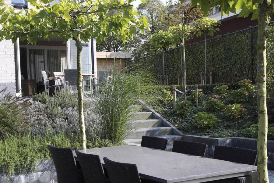 Moderne Tuin In Steenbergen Dutch Quality Gardens 6