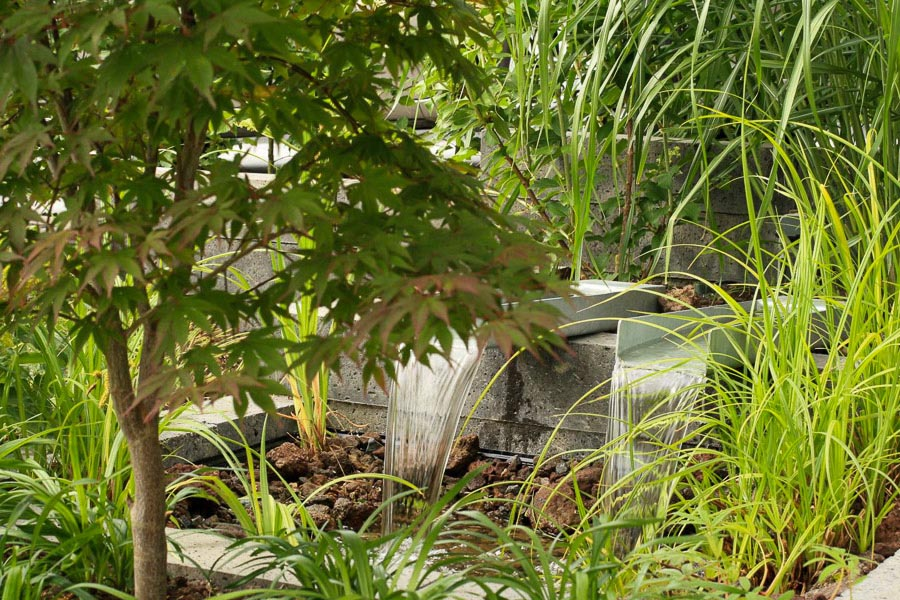 Nominatie Tuin Van 2019 Dutch Quality Gardens 1