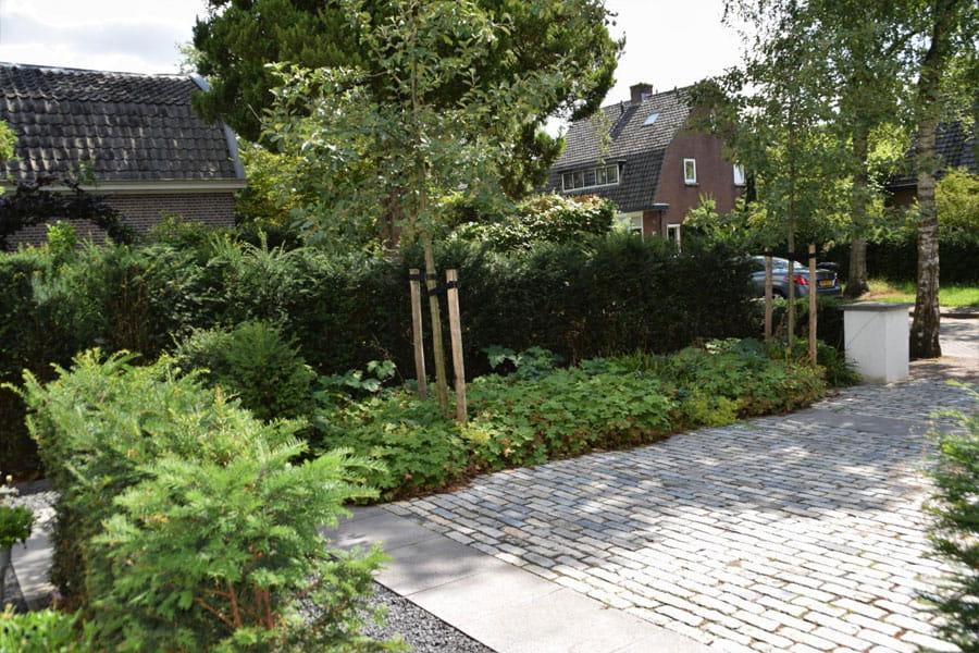 Oprit En Voortuin Zijn Een Dutch Quality Gardens 3