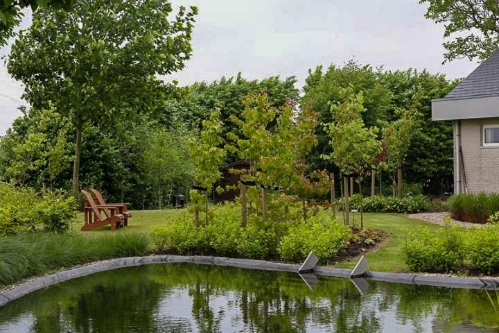 Ruimtelijk Loungen Dutch Quality Gardens 3