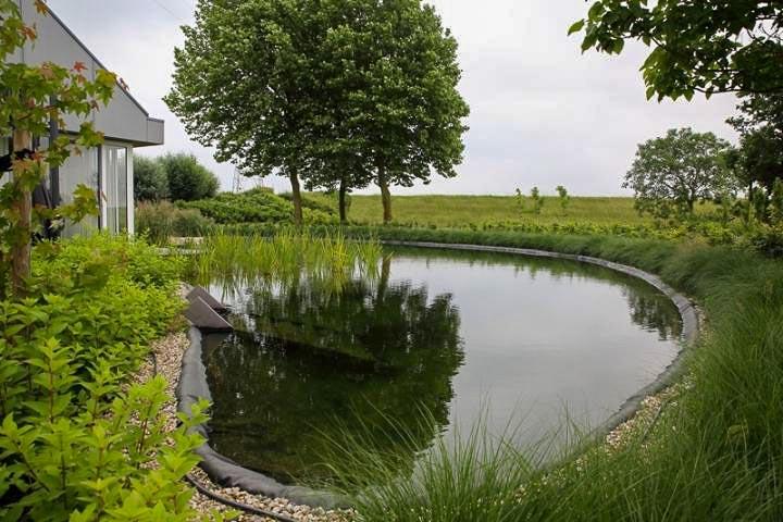 Ruimtelijk Loungen Dutch Quality Gardens 5