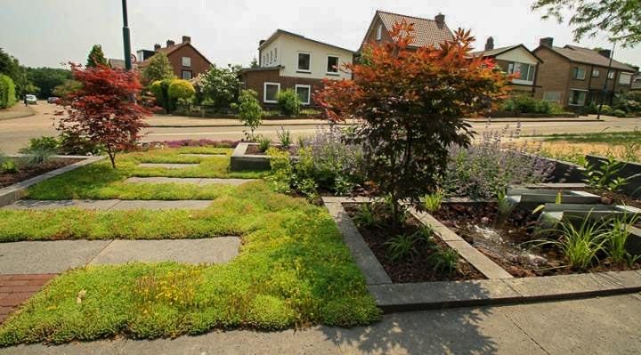 Sfeervolle Voortuin Dutch Quality Gardens 4