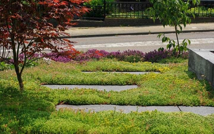 Sfeervolle Voortuin Dutch Quality Gardens 6