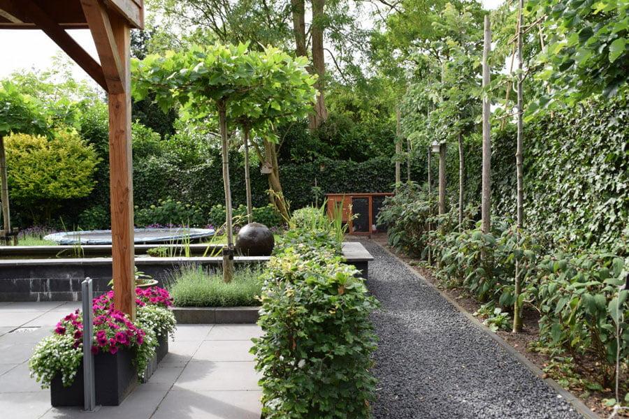 Uitzicht Op De Vijver Dutch Quality Gardens 12