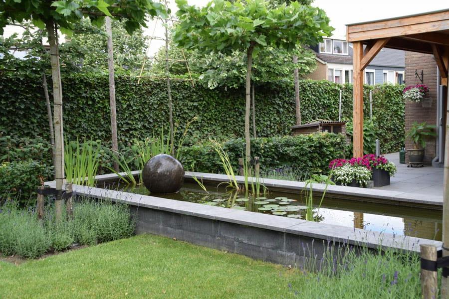Uitzicht Op De Vijver Dutch Quality Gardens 6