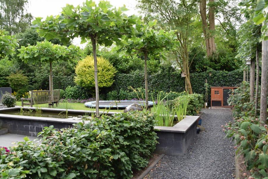 Uitzicht Op De Vijver Dutch Quality Gardens 8