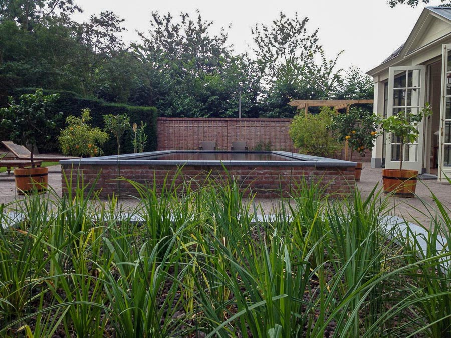 Verhoogde Zwemvijver Dutch Quality Gardens 2