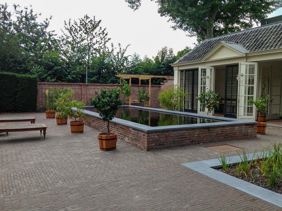 Verhoogde Zwemvijver Dutch Quality Gardens 4