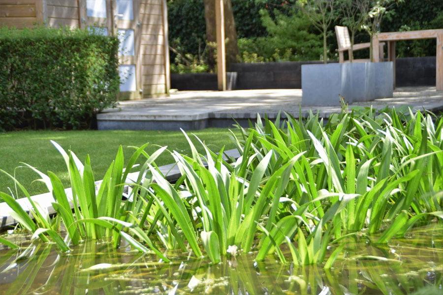 Vijver Als Verbinding Dutch Quality Gardens 2