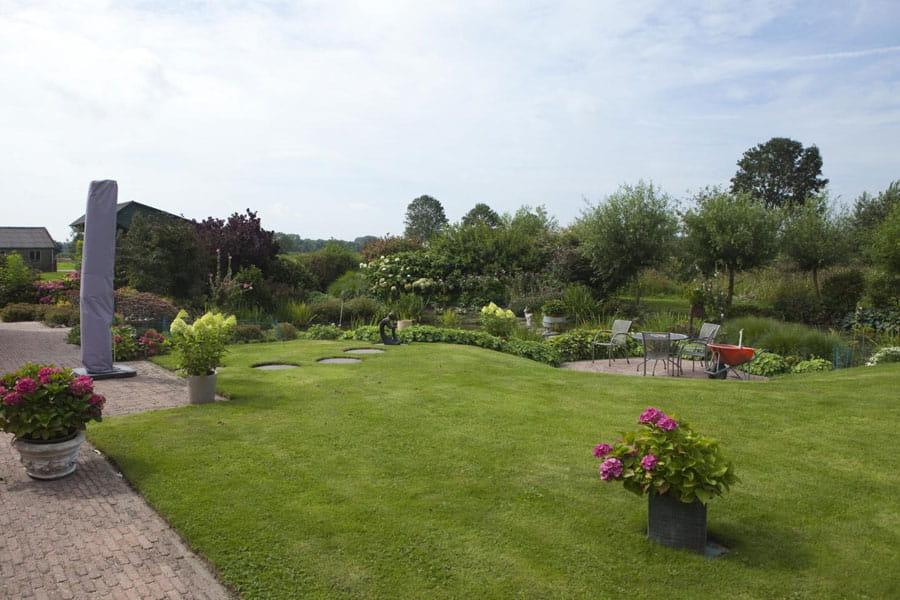 Vijvertuin Dutch Quality Gardens 4