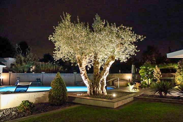 Wat Licht Voor De Tuin Doet Dqg 1